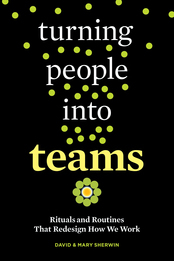 Turning People into Teams Toolkit